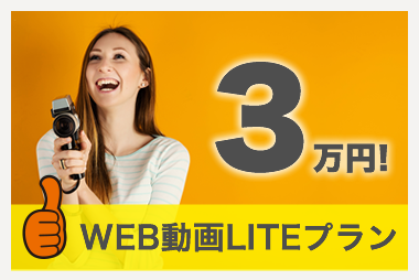 WEB動画LITEプラン